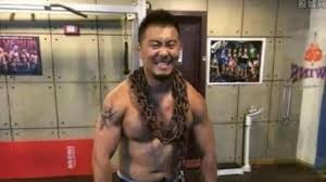 si e social mma kung fu experts in line for mma fighter who chi