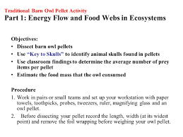 Using Owl Pellets To Illustrate Energy Transfer From Prey To ... Attracting Barn Owls Natural Rodent Control Gardening Energy Transfer And The Carbon Cycle Worksheet Edplace Tritec Science Learning Community Projects Organisms Roles Loss In Food Chain Ecology Biology Lecture Slides Outreach Materials Owl Original Mixed Media Pating 6x8 Inches Bird Wild Decomposers Worksheets For Kids Archbold Biological Station 14 Images Of Wetland Coloring Pages Diagram 037_13d0568f9211773be9a9d4d89c530b2png
