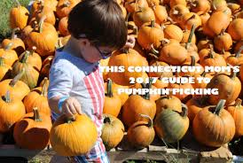 Pumpkin Patch Avon Ct by This Connecticut Mom U0027s 2017 Guide To Pumpkin Picking
