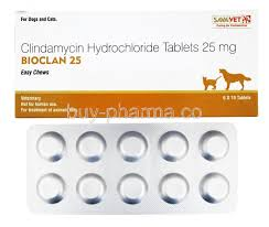 clindamycin for cats bioclan easy chews for dogs and cats buy bioclan easy chews for