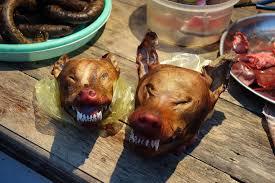 qu est ce qu un chinois en cuisine cynophagie pourquoi certains peuples mangent ils du chien