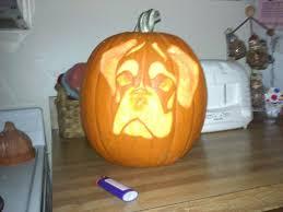 Boston Terrier Pumpkin Pattern by Pumpkin Boxer Forum Boxer Breed Dog Forums