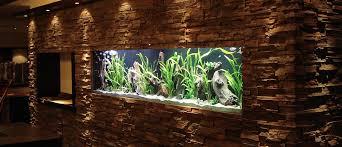 fish reps aquarienbau und terrarienbau startseite