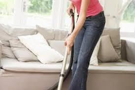 Fleas Hardwood Floors Borax by How To Get Fleas Off Your Carpet And Bare Hardwood Floors Home