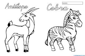 Dibujos Para Colorear Animales Salvajes Lindo Oso De Sonrisas