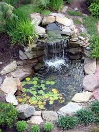 Tiny Pond Like Pool With Natural Like Waterfall And Small Plants ... Water Gardens Backyard Ponds Archives Blains Farm Fleet Blog Pond Ideas For Your Landscape Lexington Kentuckyky Diy Buildextension Album On Imgur Summer Care Tips From A New Jersey Supply Store Ecosystem Premier Of Maryland Easy Waterfalls Design Waterfall Build A And 8 Landscaping For Koi Fish Pdsalapabedfordjohnstownhuntingdon Pond Pictures Large And Beautiful Photos Photo To Category Dreamapeswatergardenscom Loving Caring Our Poofing The Pillows