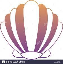 100 Sea Shell Design Seashell Icon Over White Background Colorful Design Vector