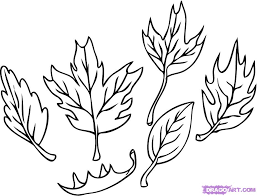 how to draw leaves step 4