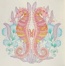 Animal Kingdom Colouring Book Coral Tropical Wonderland Coloring Animals Seahorses