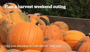 Grandville Mi Pumpkin Patches by Guide To Fall Harvest Farm Fun In Kent County Mlive Com