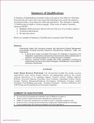 Sample Resume Summary Of Qualifications Retail Examples New