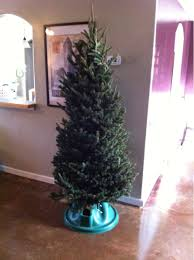 Fraser Fir Artificial Christmas Tree by Lowes Marks Down By Christmas Trees With Brown Spots To 5 Look