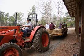 100 Truck Farm Easley Sausage Search Results Carolina Stewardship Association