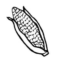 Corn Color Page Coloring Pages Tractors Funycoloring