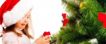 Flagpole Christmas Tree Uk by Trees U0026 Pricing Nordmann Fir Christmas Tree London Surrey