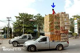 Overloaded-driving-cars-motorcycles-vans-trucks-pick-ups-samui ...