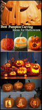 Minion Pumpkin Carving Tutorial by 15 Best Pumpkin Carving Templates Images On Pinterest Halloween