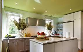 plafond de cuisine faux plafond de cuisine bien choisir le plafond de sa cuisine