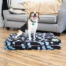 Top Rated Orthopedic Dog Beds by Personalized 5
