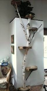 Tree Wall Decor Wood by 25 Unique Tree Branch Decor Ideas On Pinterest Tree Branches