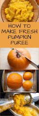 Keeping Pumpkin Pie From Cracking by Best 25 Fresh Pumpkin Pie Ideas On Pinterest Freezing Pumpkin