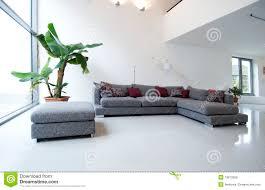 baum im wohnzimmer stockfoto bild glas haupt raum