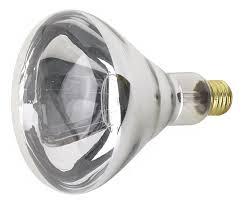 250 watt r40 heat l light bulb 05442 wwwlspluscom 250 watt