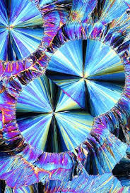 Image result for polarized light microscopy crystals