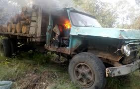 100 Big Truck Mafia Indigenous Environmental Defender Killed As Logging Mafia Targets