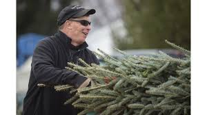 Millers Christmas Tree Farm by Howard Tree Farm Keeps Family Tradition Alive Howard County Times