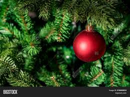Close Up Of Small Red Decorative Ball Hanging On Christmas Tree
