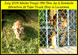 100 Tiger Truck Stop Louisiana Tigersdontbelongattruckstops Hashtag On Twitter