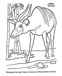 Free Coloring Pages Of African Animal