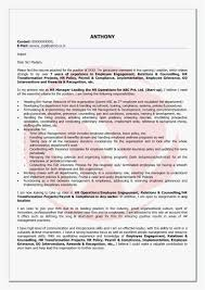 Executive Cover Letter Examples Format Call Center Job Description For Resume Lovely 23 Manager