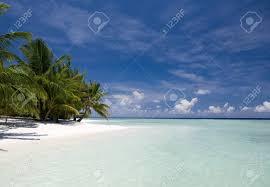 100 Kuramathi Island Maldives Beach Paradise In Island