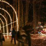 roper mountain lights regarding lights in
