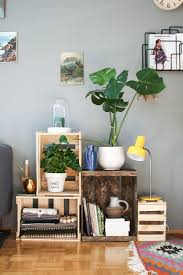 deko pflanzen bilder ideen
