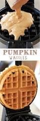 Muirhead Pecan Pumpkin Butter Ingredients by 200 Best Pumpkin Recipes Images On Pinterest Pumpkin Recipes
