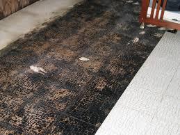 asbestos floor tile under carpet john robinson house decor
