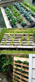 Pallet Raised Bed Uk Frame Dump A Day Fun Diy Ideas Beds For The Garden Could Use Collar