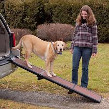 New Dog Ramp For SUV : Build A Foldable Dog Ramp For SUV ... Solvit Deluxe Xl Telescoping Pet Ramp Champ Telescopic Dog From Easy Animal 5 Foot Folding For Cardoor Lweight Anti Slip Mr Hzhers Smart 70 Reviews Wayfair Extrawide Ramps Discount Gear Travel Lite Bi Fold Full Black Blue 176263 Collapsible Loader Steps Vehicles New Suv Build A Foldable Best Suvs Cars And Trucks Pro Ultralite Bifold Chewycom