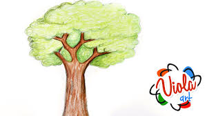 How to draw a Tree Pencil Color Drawing Tutorial for Kids Narrated Step by Step