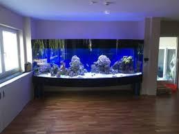 unser wohnzimmerriff 3 000 liter mein aquariumtagebuch