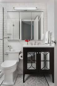 Pottery Barn Hotel Recessed Medicine Cabinet by Best 25 Black Medicine Cabinet Ideas On Pinterest Traditional