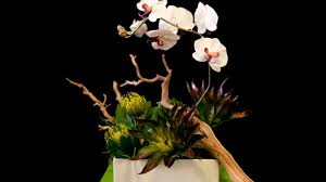 More Than Just A Flower Shop Halifaxs Own Props Name Youll Want To Remember For Creative Flair Personalized Service And Fabulous Flowers