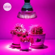 best 25 grow light bulbs ideas on plant grow lights