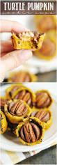 Downeast Maine Pumpkin Bread by 17 Best Images About Pumpkin Everything On Pinterest Pumpkins