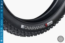 10 Top Notch Fat Bike Tires - Mountain Bike Review- Mtbr.com