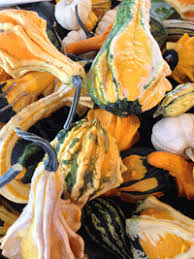 Chesterfield Pumpkin Patch 2015 by Take Your Pick At These St Louis Pumpkin Patches