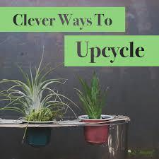 Clever Ways To Upcycle Le Bouquet StLaurent Florist